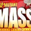 geiner-mass