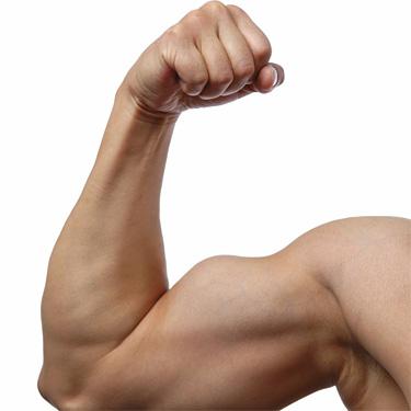 Восстановление мышц с использованием BCAA